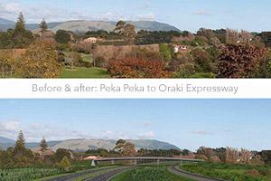 Peka Peka to Oraki Expressway