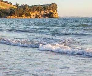 Todd Properties to challenge Okura Marine Reserve decision