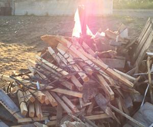 Woodwaste1