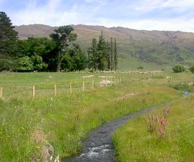 fenced stream