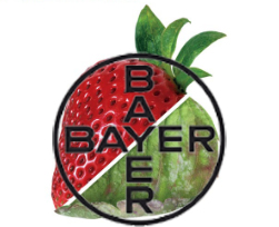 EPA seeks submissions on Bayer's bid to ramp up fungicide